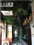 饭店室内假树布景